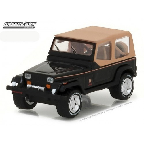 All-Terrain Series 5 - 1994 Jeep Wrangler Sahara