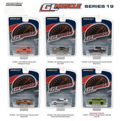 GL Muscle Series 19 - SET