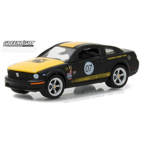 Hobby Exclusive - 2008 Ford Mustang Terlingua Racing Team
