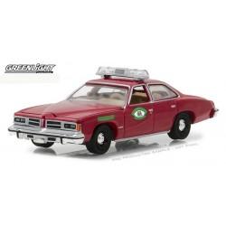 Hot Pursuit Series 26 - 1976 Pontiac LeMans Missouri Highway Patrol