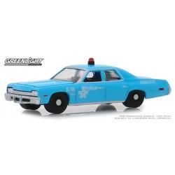 Greenlight Hot Pursuit Series 32 - 1974 Dodge Monaco