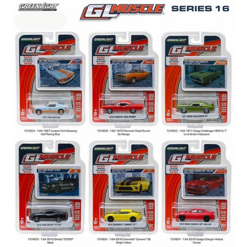 GL Muscle Series 16 - Set